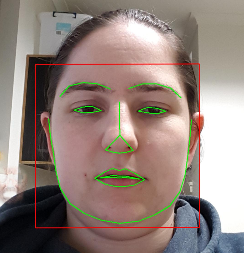 Facing Challenges: OpenCV Face Detection for Mobile Applications